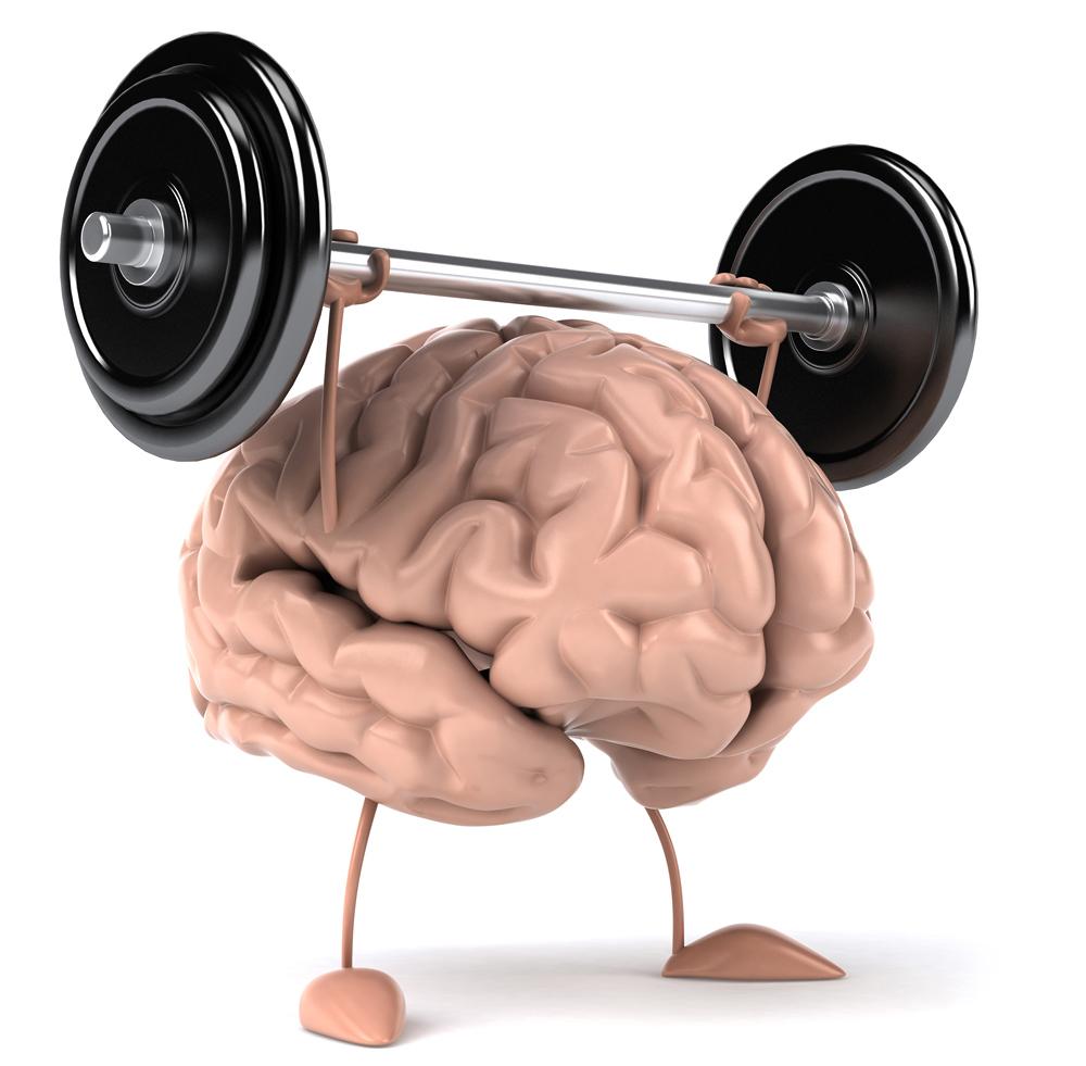 beyin-sampiyonu